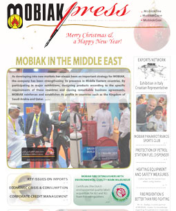 Issue 11 - December 2013
